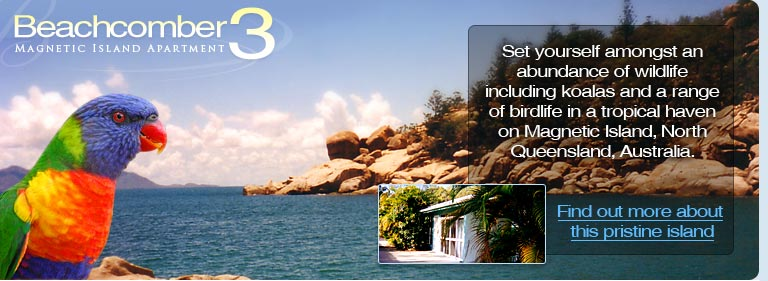 Beachcomber 3 Apartment - Set yourself amongst an abundance of wildlife including koalas and a range of birdlife in a tropical haven on Magnetic Island, North Queensland, Australia